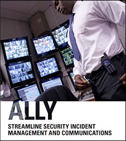Download Our Ally Brochure